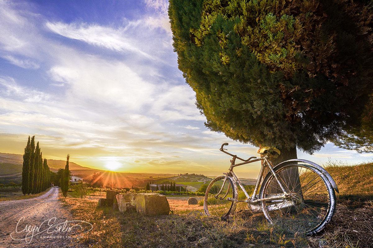 Caryn-Esplin-08517-Merge-BicycleSunset2 copy